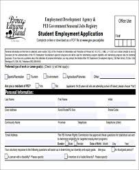 Sample Generic Application For Employment Beauteous 48 Job Application Form Templates Free Premium Templates