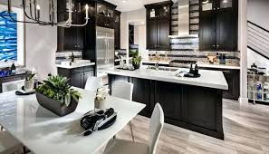 Kitchens With Dark Cabinets And Light Countertops Luxury Kitchen