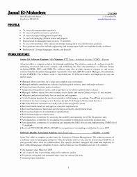 15 Elegant Software Testing Resume Samples 2 Years Experience