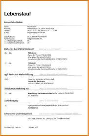 8 Muster Lebenslauf Word Resignation Format