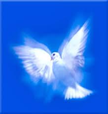 Resultado de imagen de la paz en vosotros