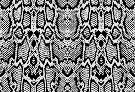 Python Pattern Fascinating Snake Python Skin Texture Seamless Pattern Black On White