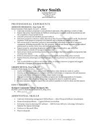 sample insurance agent resume