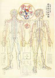 Shiatsu Tsubo Chart