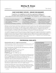 Executive Summary Resume Examples Enchanting Marketing Executive Resume Samples Free Examples Manager S Sevte