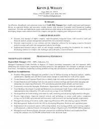 Sample Resume For Credit Manager Best Solutions Of Risk Management Resume In Officer Sample Assistant 1