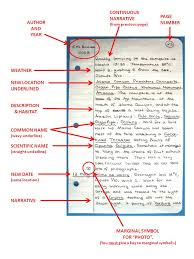 narrative style essay our work 5 tips for writing a good narrative essay by sean craydim