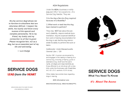 An Open Letter To The Chambers Of Commerce Parkinson Service Dog