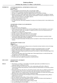 Advertising Consultant Sample Resume Advertising Consultant Resume Samples Velvet Jobs 8