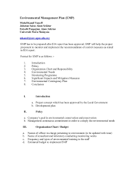 format of a management report environmental management plan report format