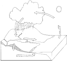 Small Picture Water Cycle Coloring Page Coloring Home