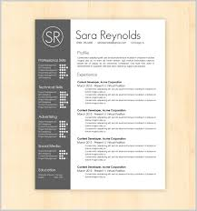 Nice Resume Templates Magnificent Striking Design Of Amazing Resume Templates 48 Resume Template