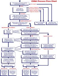 Ca Chart Ceqa Process Flow Chart