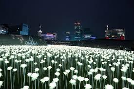 Đèn led Hàn Quốc nhập khẩu trực tiếp Hàn Quốc: Đèn led dây giá tốt bảo hành  5 năm