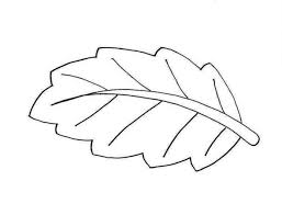 Small Picture Leaf Coloring Pages for Preschool Coloring Page for Kids