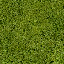 grass texture game. Grass Texture By Lostsoul08 Game