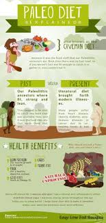Paleo Chart 39 Best Paleo Infographics Images Paleo Diet How To Eat