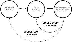 'Double-loop' learning, adopted from Argyris and Schn (