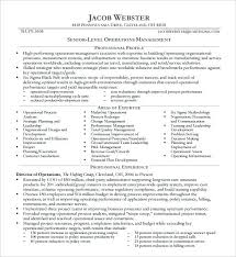 Free Executive Resume Templates Classy Executive Resume Templates Chief Technology Officer Executive Resume