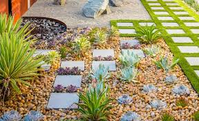 Small Picture Landscaping With Succulent Plants Drought Tolerant Plantings