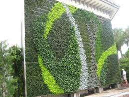 Small Picture 19 best Green Wall images on Pinterest Vertical gardens Living