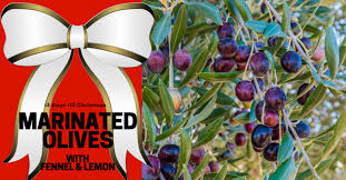 day 10 gifts a foo would love marinated olives with fennel lemon