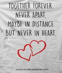 Best Quotes About Love Unique Love Quotes The Best Hover Me