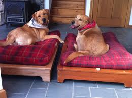 Outdoor Dog Bed Platform Noten Animals With Inspirations