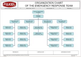 Hse Organization Chart Pakel Ltd