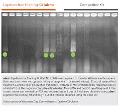 Ligation Free Cloning Kit 95 00 Us95 00 Cloning Kits