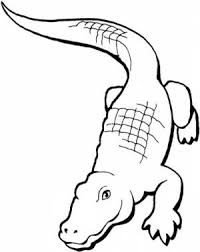 Small Picture Get This Alligator Coloring Pages Printable For Kids R1n7l