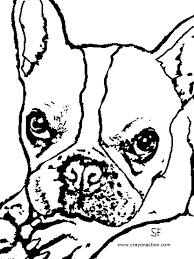 French Bulldog Coloring Page | Crayon Action Coloring Pages