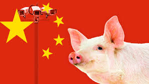Image result for orwell china