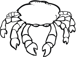 Small Picture Free Printable Crab Coloring Pages For Kids Inside Hermit Crab