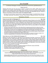 Credit Analyst Resume Cool Credit Analyst Resume Example From Professional