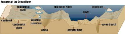 Image result for relief of the ocean floor