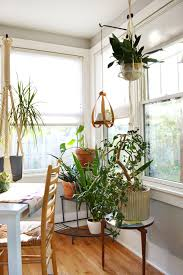 Indoor Plants Living Room Pinterest Decorating With House Plants Indoor Swimming Pools