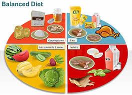Nutrition Balanced Diet Chart Food Icons And Illustrations Diet Food Chart Balanced