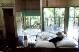 Running Waters Cabin Treetops Montville  Picture Of Treetops Treehouse Montville