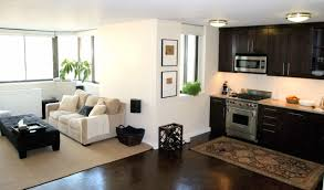Living In One Room Interior Design Ideas For Apartments With Modern Living Room With