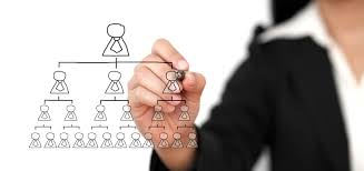 What Are The Benefits Of Having An Organizational Chart In