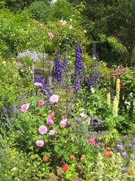 Small Picture Shrubs For Cottage Garden Gardening Ideas