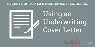 How To Write A Life Insurance Cover Letter Like A Million Dollar
