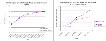 Green Bean Growth Chart Dirty Beans Analysis Of Soil Quality And Bean Growth
