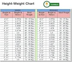 Kitten Weight Chart By Age Ideal Weight For A Cat In Kg My Cute Cats