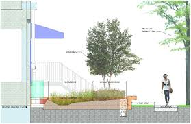 Small Picture Rain Garden Design