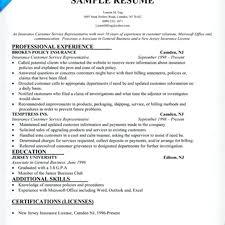 Financial Representative Sample Resume Resume Customer Service Rep Resume Examples Representative Sample 17