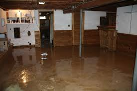 painted basement floorsPainted Basement Floors  Basements Ideas