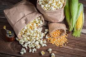 Growing Popcorn Growing Popcorn Top Tips For Success