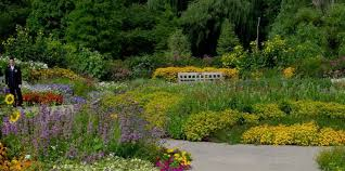 Image result for ann arbor botanical gardens